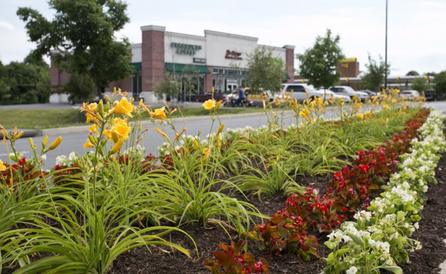 Gateway Shopping Center Seasonal Landscape Maintenance in Winchester, VA