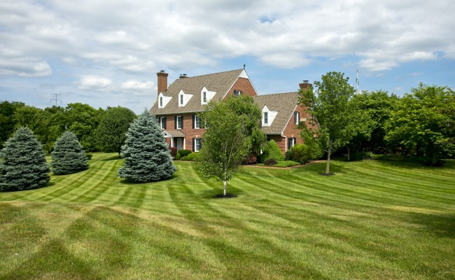 Residential Lawn Treatment in Winchester, VA