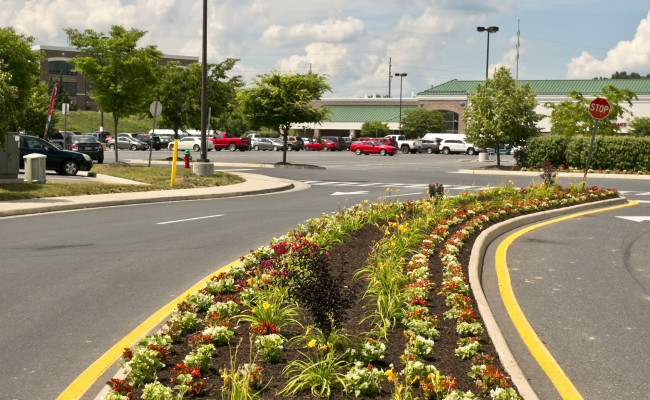 Commercial Landscaping at Shopping Center in Winchester, VA