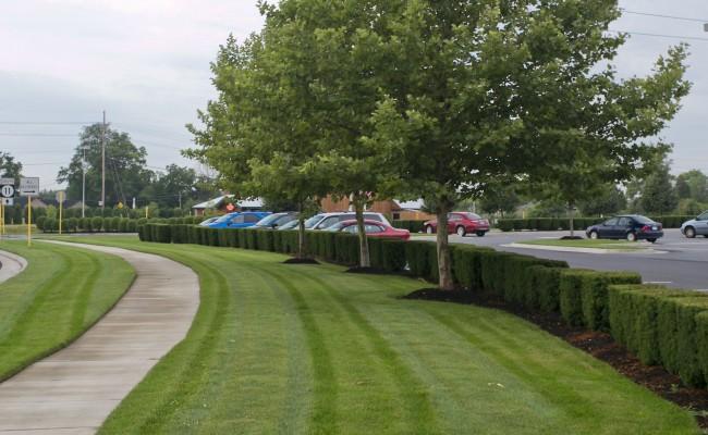 Retail Center Lawn Care in Winchester, VA