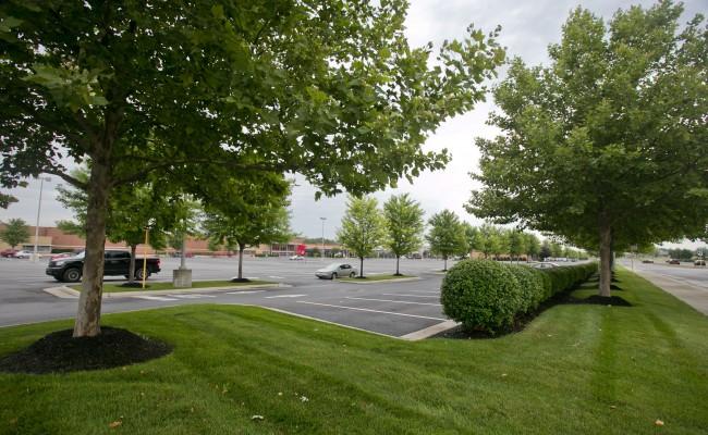 Retail Center Lawn Treatment in Winchester, VA
