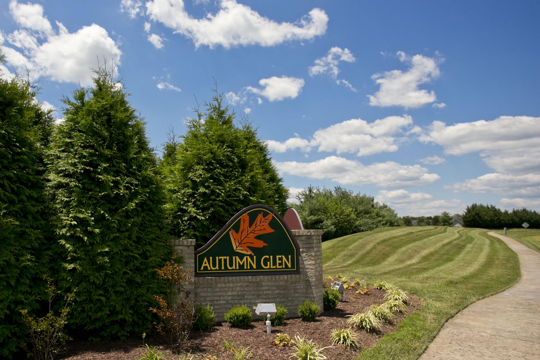 Autumn glen hoa landscape maintenance greatscapes for Landscape maintenance
