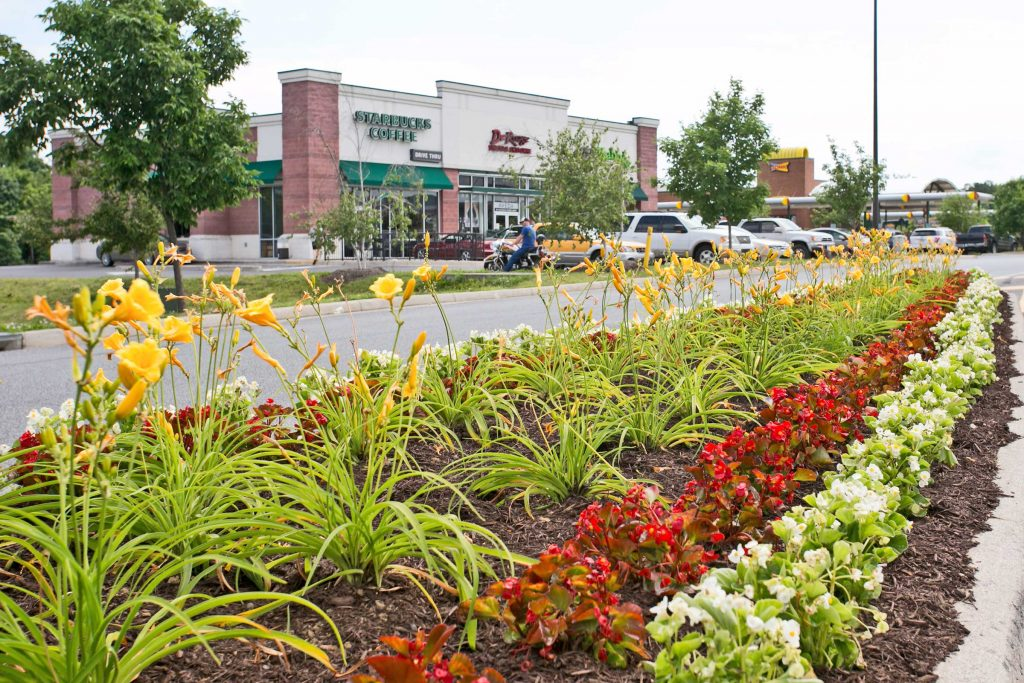 Commercial Landscape Management at Winchester Gateway Shopping Center in Winchester, VA