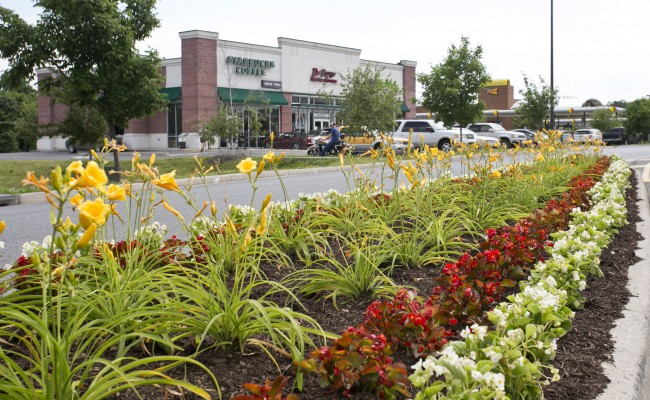Gateway Shopping Center Commercial Landscape Management in Winchester, VA