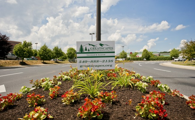 Shopping Center Landscaping Services in Winchester, VA