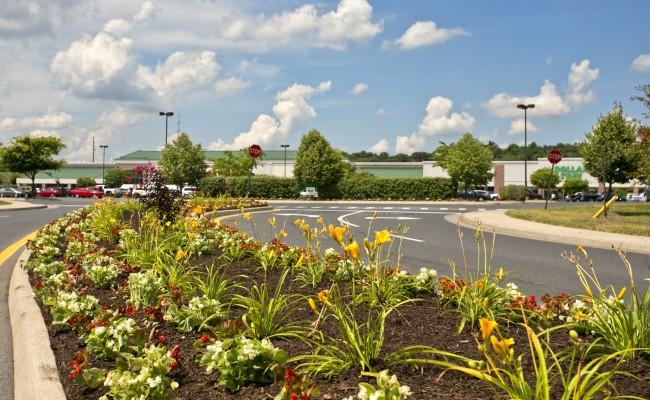 Shopping Center Grounds Maintenance in Winchester, VA