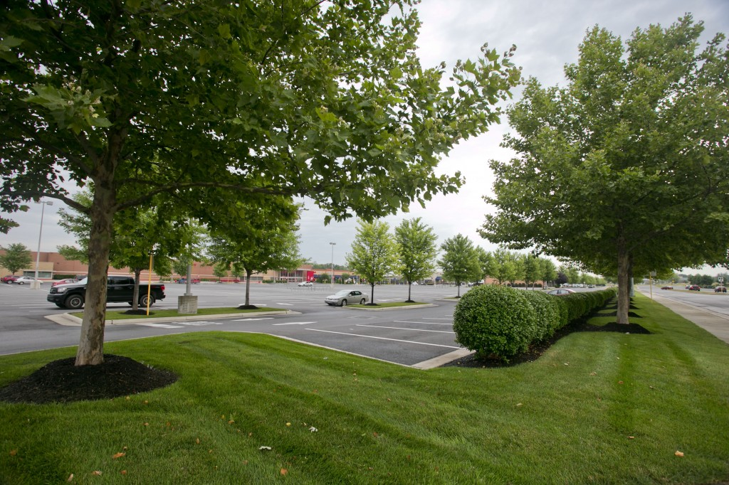 Grounds Maintenance at Rutherford Crossing in Winchester, VA