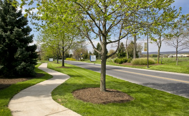 Commercial Lawn Care at Valley Health Systems in Winchester, VA