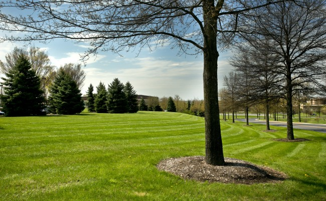 Commercial Grounds Maintenance at Valley Health Systems in Winchester, VA