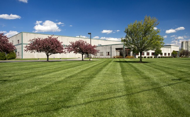 Green Bay Packaging – Commercial Landscape Management in Winchester, VA