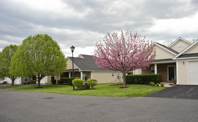 Woodbrook Village Homeowners Association in Winchster, VA Grounds Maintenance